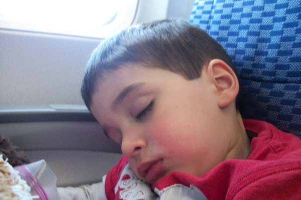 Tommy napping on the plane